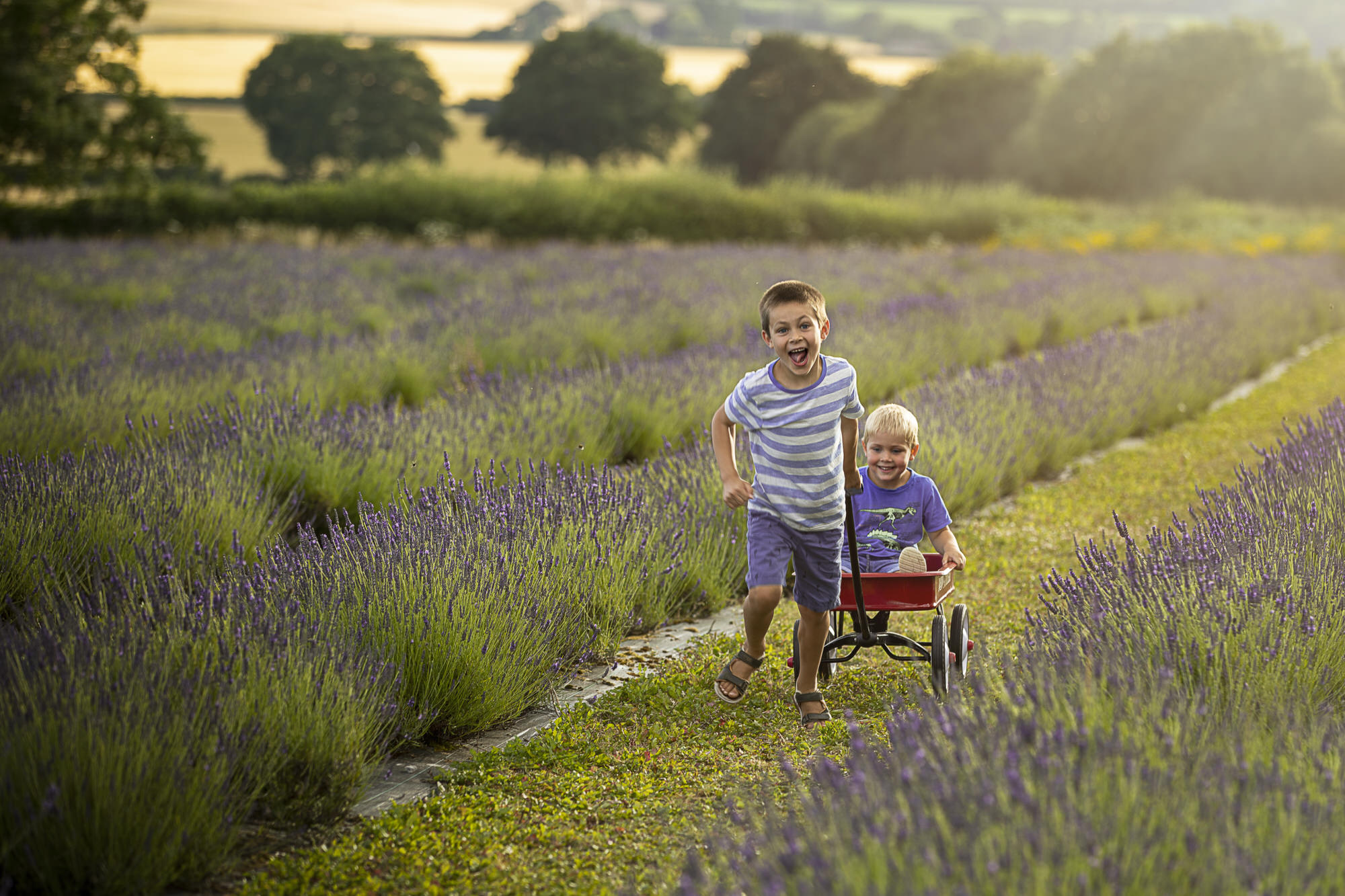 Child and Family Outdoor Photography this made a lovely portrait, taken by an Outdoor Photographer, family photos, Photographer Whitchurch Hampshire